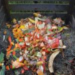 Akcja Kompostujesz-zyskujesz i Bezpieczna Podróż