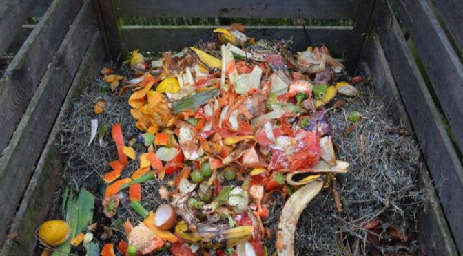 Akcja Kompostujesz-zyskujesz